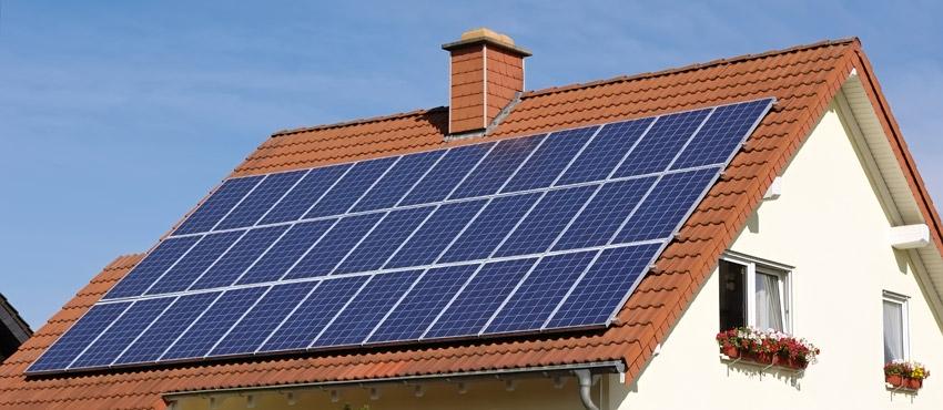 На Львівщині збудували велику сонячну електростанцію (Відео)